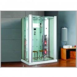 Phòng tắm xông hơi khô kết hợp ướt Govern K 022