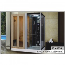 Phòng tắm xông hơi khô kết hợp ướt Govern JS 8856